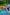Catch the Ark