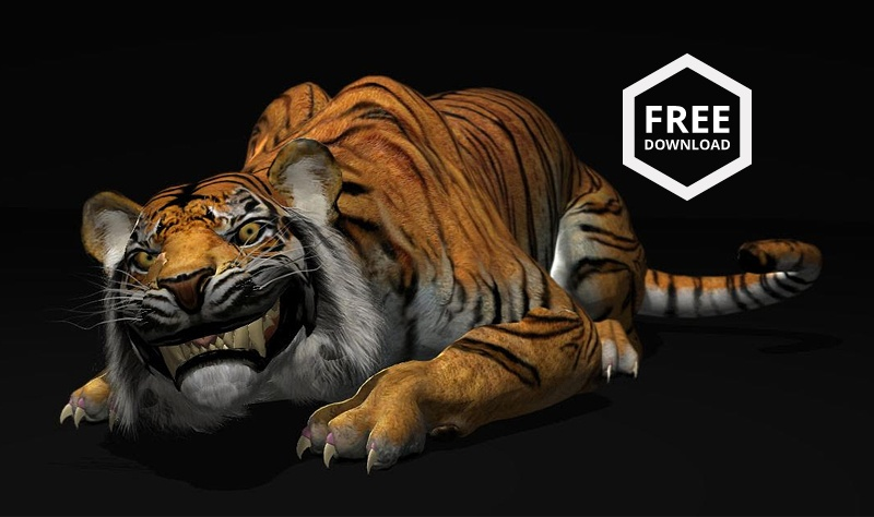 free tiger rig download