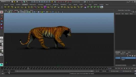 tiger rig 2
