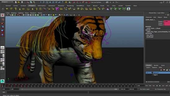 tiger rig 3