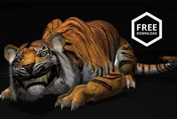 free-tiger-animation-rig